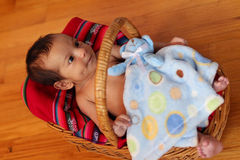 Bambino in cestino Fotografia Stock