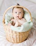 Bambino in cestino Fotografia Stock Libera da Diritti