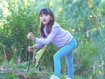 Bambino che cammina alla foresta Fotografia Stock