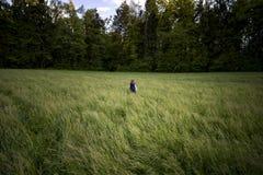 Bambino che cammina da solo nel campo fotografia stock
