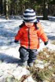 Bambino che cammina nella foresta Fotografia Stock