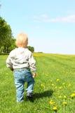 Bambino che cammina sul campo verde Fotografia Stock Libera da Diritti