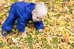 Bambino che fa allenamento fra fogliame giallo nel parco di autunno Fotografia Stock