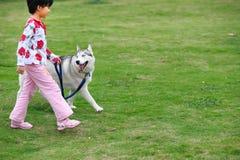 Bambino che gioca con il cane Immagini Stock