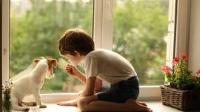 Bambino che gioca con il suo amico del cane sulla finestra video d archivio