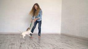 Bambino che gioca con il suo cane a casa stock footage