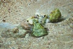 Bambino che gioca sulla torre di pietra da costruzione e della spiaggia Pietre sulla spiaggia immagine stock