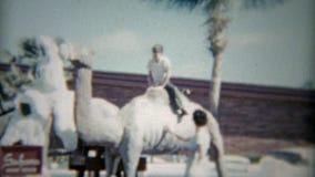 1959: Bambino che guida il cammello a Sahara Miami Beach Hotel Miami, Florida stock footage
