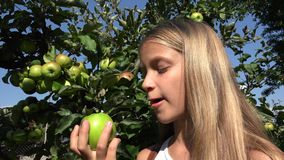 Bambino che mangia Apple, bambino in frutteto, agricoltore Girl Studying Fruits in albero stock footage