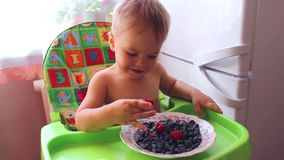 Bambino che mangia le bacche mature stock footage