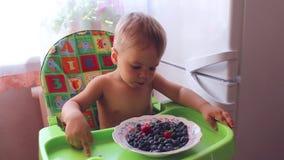 Bambino che mangia le bacche mature video d archivio