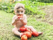 Bambino che mangia pomodoro Fotografia Stock Libera da Diritti