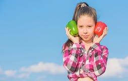 Bambino che presenta i generi di pepe Verdure nostrane del raccolto di caduta Quale pepe voi selezionerebbe Concetto vegetariano fotografie stock libere da diritti