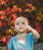 Bambino che rivela fotografie stock libere da diritti