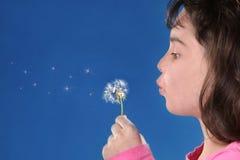 Bambino che salta Dandylions contro la priorità bassa blu Fotografia Stock Libera da Diritti