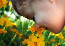 Bambino che sente l'odore di un fiore giallo Fotografia Stock Libera da Diritti