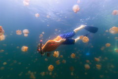 Bambino che si immerge nel lago jellyfish Immagine Stock