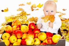 Bambino che si siede in scatola di la mela fotografia stock libera da diritti