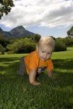 Bambino che striscia sull'erba all'aperto Immagini Stock Libere da Diritti
