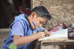 Bambino che studia nella sua casa Immagine Stock Libera da Diritti