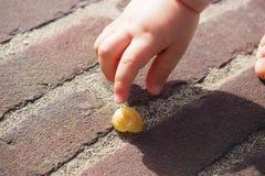 bambino che tiene una lumaca Fotografia Stock