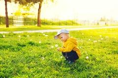 Bambino con i denti di leone nella campagna a primavera Fotografia Stock