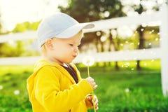 Bambino con i denti di leone nella campagna a primavera Fotografie Stock Libere da Diritti