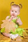 Bambino con i fogli fotografia stock libera da diritti
