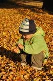 Bambino con i fogli di autunno Fotografie Stock Libere da Diritti