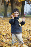Bambino con i fogli di autunno Immagini Stock