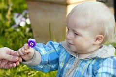 Bambino con il fiore Fotografia Stock