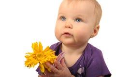 Bambino con il fiore Fotografie Stock