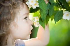 Bambino con il fiore del gelsomino Fotografie Stock