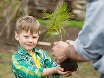 Bambino con il suo albero gettato padre fotografie stock libere da diritti
