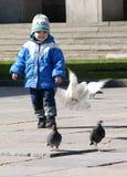 Bambino con la colomba della mosca fotografia stock