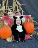 Bambino con le zucche Fotografia Stock