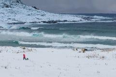 Bambino con sledding Paesaggio di inverno, Alnes, Norvegia Fotografie Stock