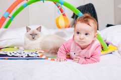 Bambino con un gatto Immagine Stock Libera da Diritti