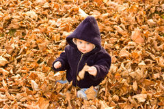 Bambino coperto dai fogli di autunno fotografia stock
