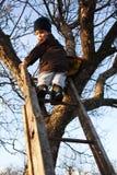 Bambino coraggioso sulla scaletta Fotografia Stock Libera da Diritti