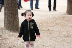 Bambino coreano sveglio Fotografia Stock