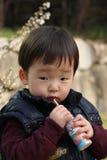 Bambino coreano sveglio Fotografia Stock Libera da Diritti