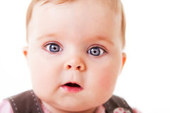 Bambino curioso che fissa alla macchina fotografica - isolata Fotografie Stock