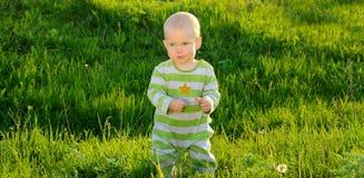 Bambino del bambino sul fondo dell'erba verde della molla Fotografie Stock