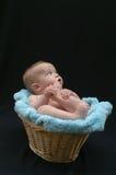 Bambino del cestino Immagine Stock