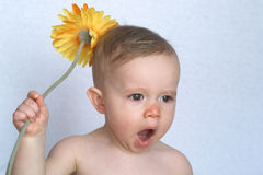Bambino del fiore Fotografie Stock Libere da Diritti