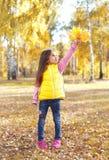 Bambino della bambina con le foglie di acero gialle che giocano in autunno Immagini Stock