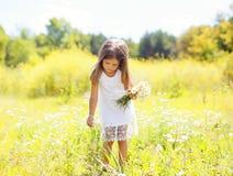 Bambino della bambina sui fiori delle camomille di raccolto del prato immagine stock