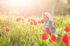 Bambino della bambina in un campo con erba verde ed il tulipano di fioritura fotografie stock