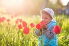 Bambino della bambina in un campo con erba verde ed il tulipano di fioritura immagini stock libere da diritti